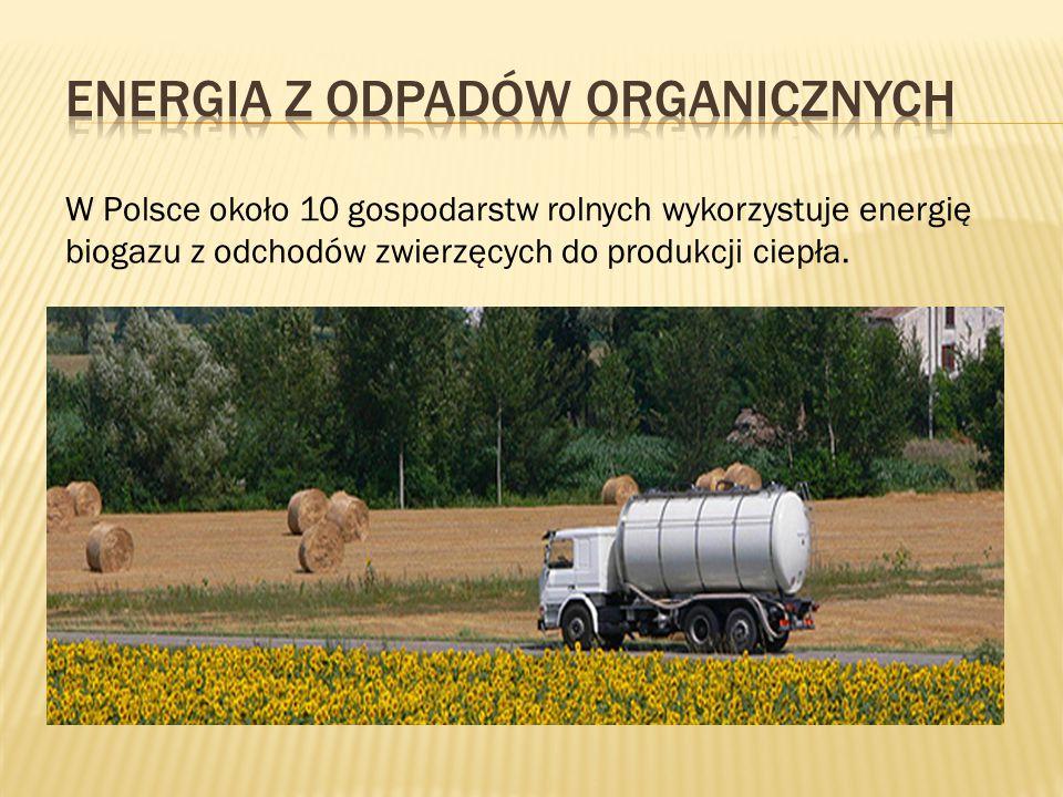 W Polsce około 10 gospodarstw rolnych wykorzystuje energię biogazu z odchodów zwierzęcych do produkcji ciepła. W procesach fermentacji odpadów biologi