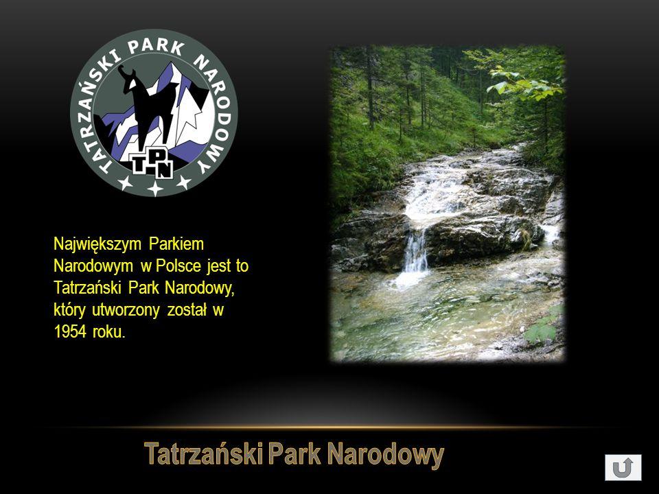 Największym Parkiem Narodowym w Polsce jest to Tatrzański Park Narodowy, który utworzony został w 1954 roku.