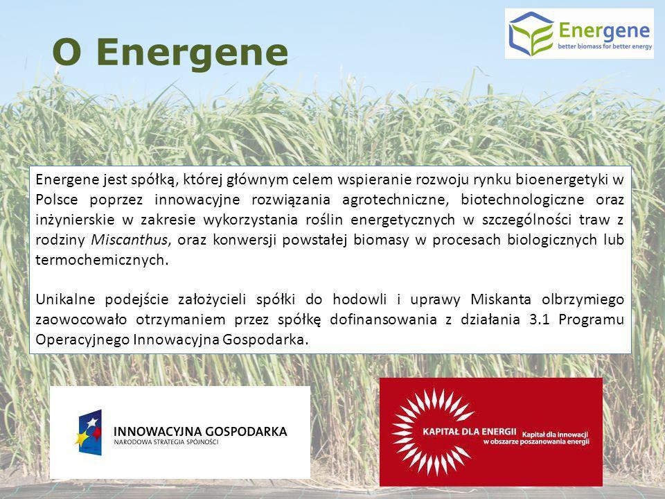 Energene jest spółką, której głównym celem wspieranie rozwoju rynku bioenergetyki w Polsce poprzez innowacyjne rozwiązania agrotechniczne, biotechnolo