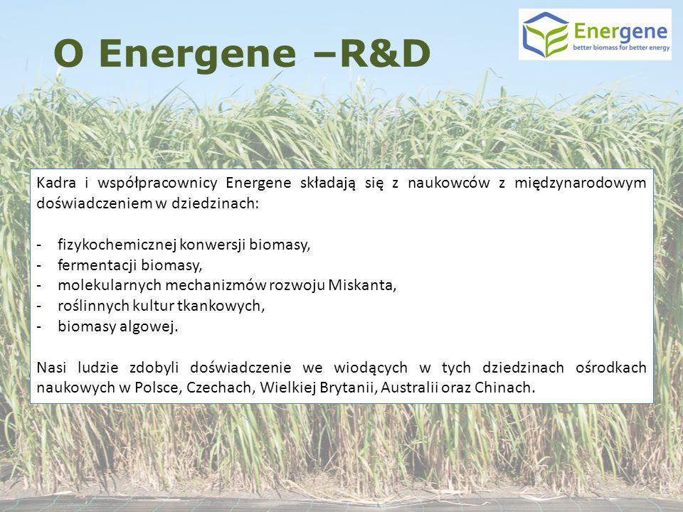 Kadra i współpracownicy Energene składają się z naukowców z międzynarodowym doświadczeniem w dziedzinach: -fizykochemicznej konwersji biomasy, -fermen