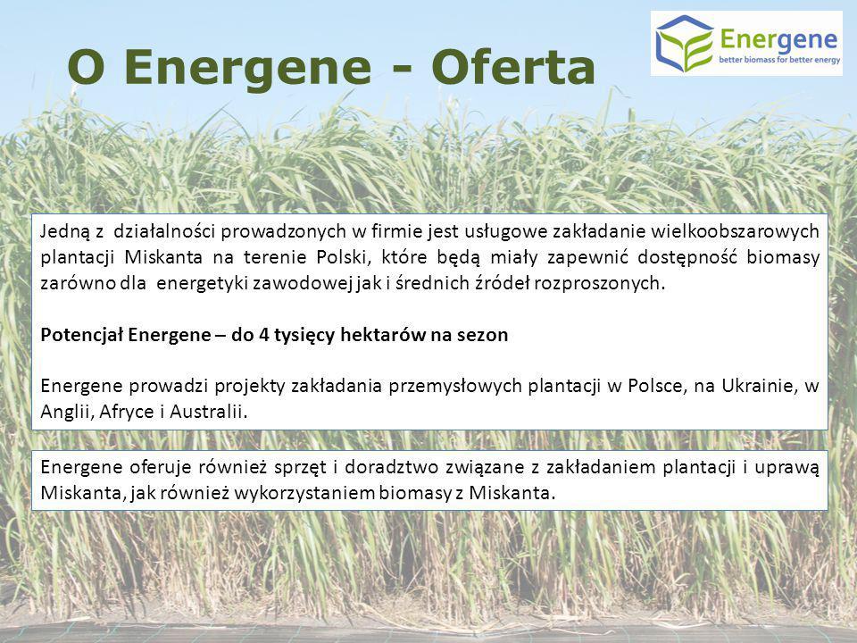 Jedną z działalności prowadzonych w firmie jest usługowe zakładanie wielkoobszarowych plantacji Miskanta na terenie Polski, które będą miały zapewnić