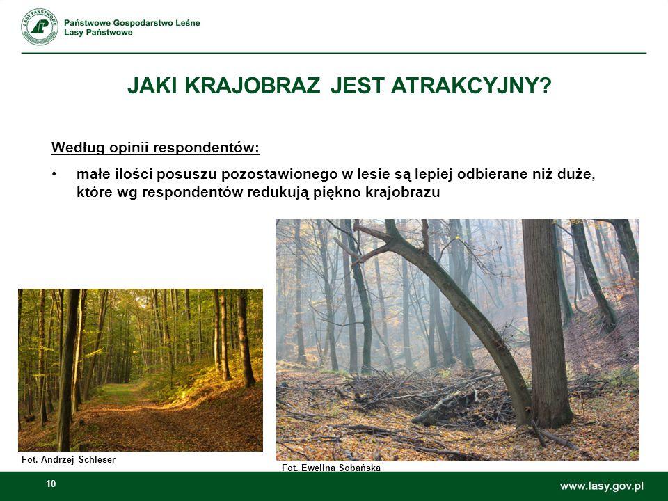 10 JAKI KRAJOBRAZ JEST ATRAKCYJNY? Według opinii respondentów: małe ilości posuszu pozostawionego w lesie są lepiej odbierane niż duże, które wg respo