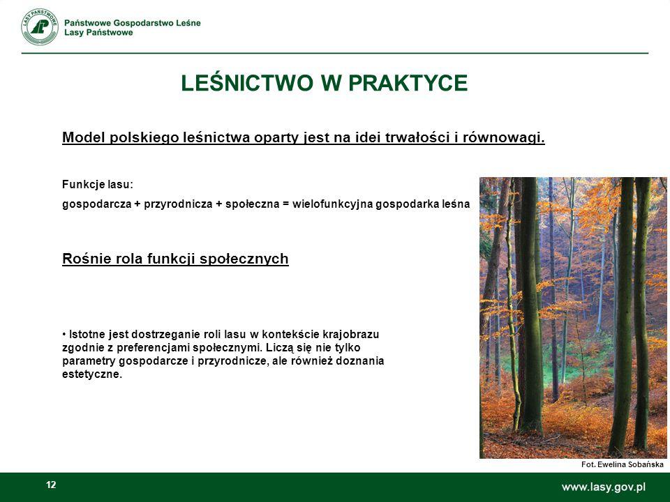 12 LEŚNICTWO W PRAKTYCE Model polskiego leśnictwa oparty jest na idei trwałości i równowagi. Funkcje lasu: gospodarcza + przyrodnicza + społeczna = wi