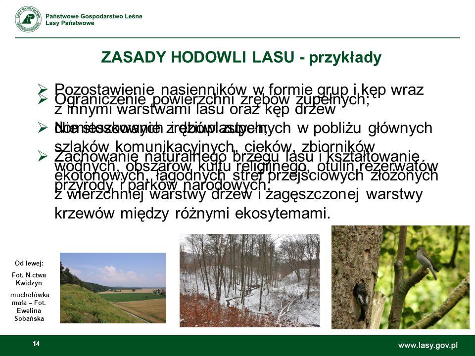 14 ZASADY HODOWLI LASU - przykłady Od lewej: Fot.N-ctwa Kwidzyn muchołówka mała – Fot.