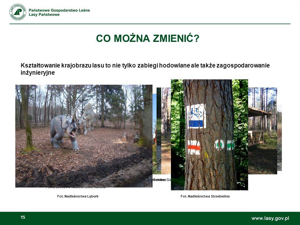15 CO MOŻNA ZMIENIĆ? Kształtowanie krajobrazu lasu to nie tylko zabiegi hodowlane ale także zagospodarowanie inżynieryjne Fot. Z zasobów Nadleśnictwa