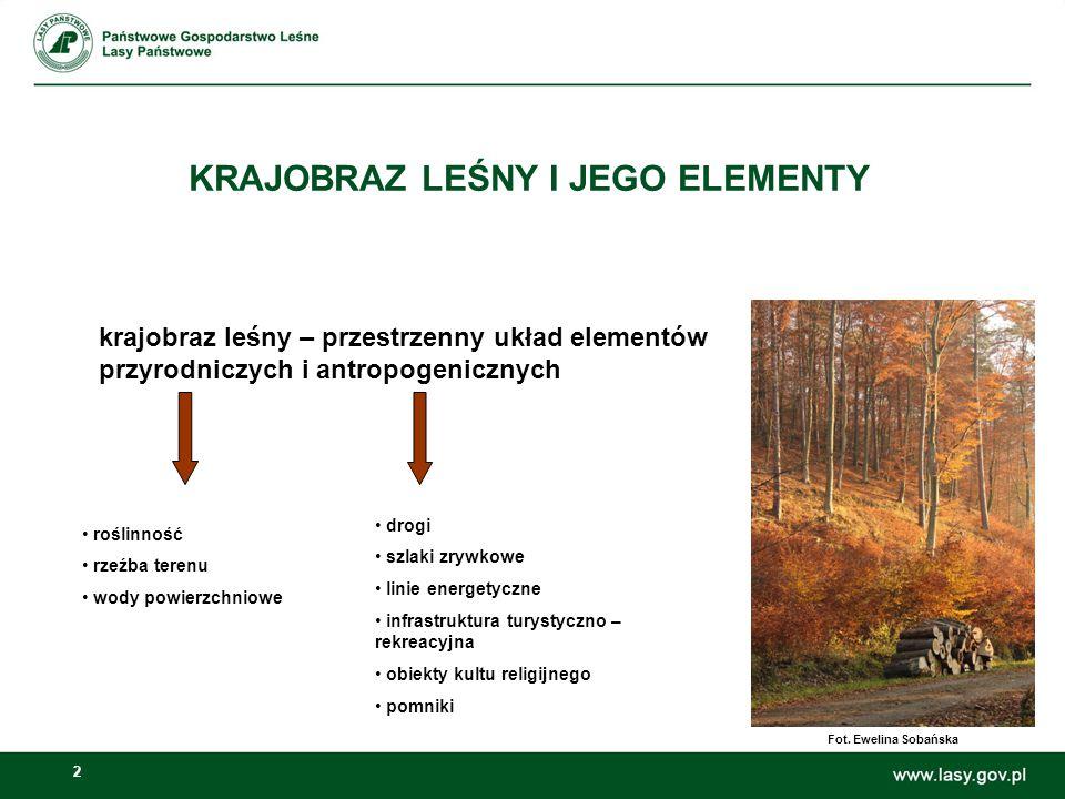2 KRAJOBRAZ LEŚNY I JEGO ELEMENTY krajobraz leśny – przestrzenny układ elementów przyrodniczych i antropogenicznych roślinność rzeźba terenu wody powi