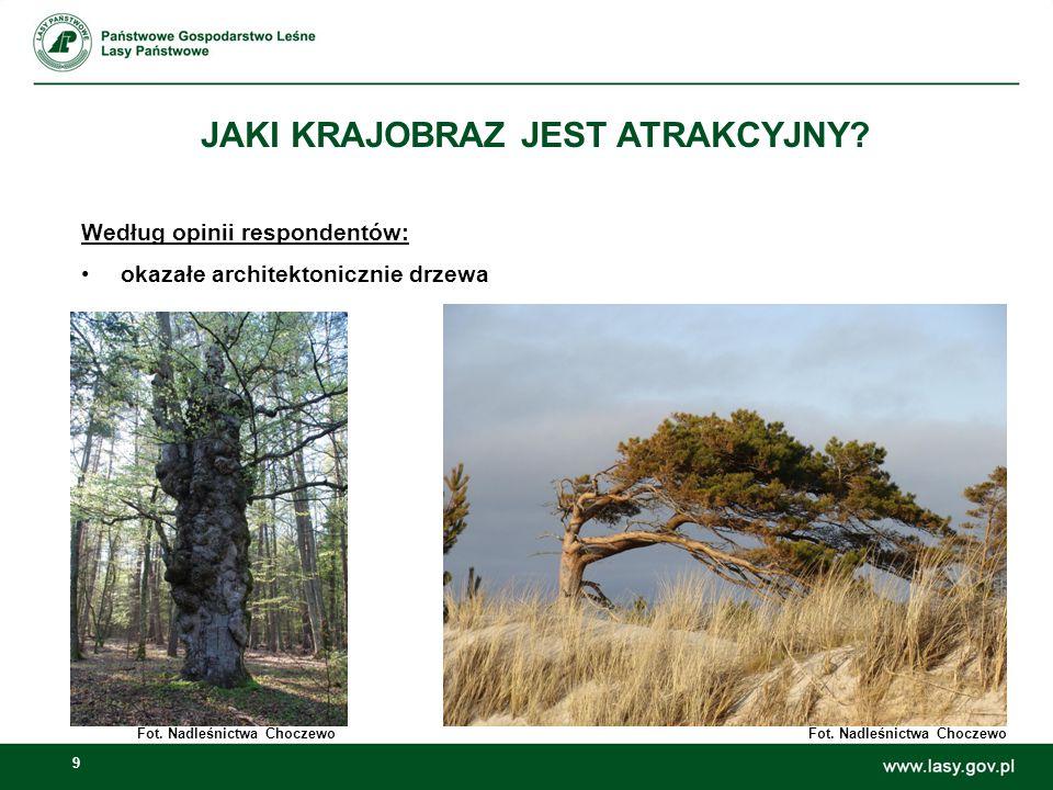9 JAKI KRAJOBRAZ JEST ATRAKCYJNY? Według opinii respondentów: okazałe architektonicznie drzewa Fot. Nadleśnictwa Choczewo