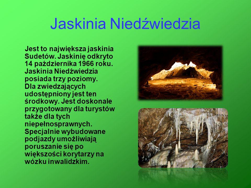Jaskinia Niedźwiedzia Jest to największa jaskinia Sudetów. Jaskinię odkryto 14 października 1966 roku. Jaskinia Niedźwiedzia posiada trzy poziomy. Dla