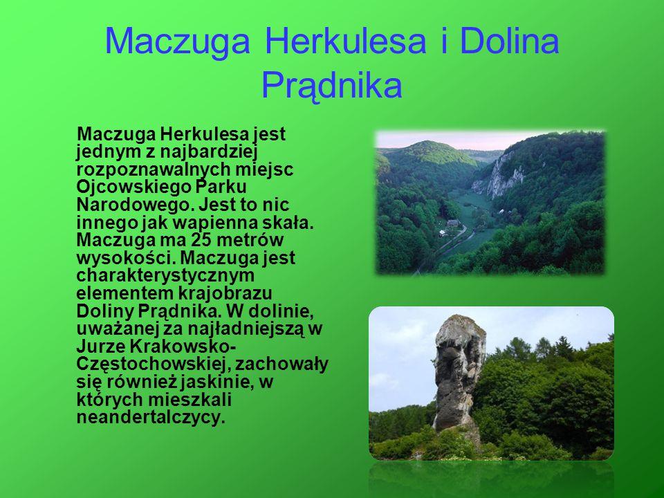 Maczuga Herkulesa i Dolina Prądnika Maczuga Herkulesa jest jednym z najbardziej rozpoznawalnych miejsc Ojcowskiego Parku Narodowego. Jest to nic inneg