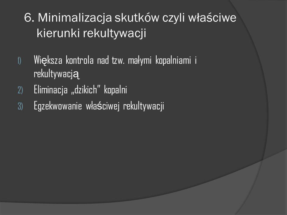 """6. Minimalizacja skutków czyli właściwe kierunki rekultywacji 1) Wi ę ksza kontrola nad tzw. małymi kopalniami i rekultywacj ą 2) Eliminacja """"dzikich"""""""