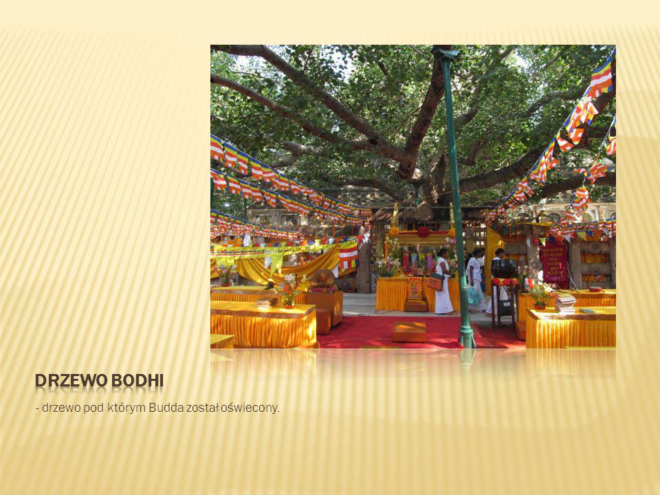 - drzewo pod którym Budda został oświecony.
