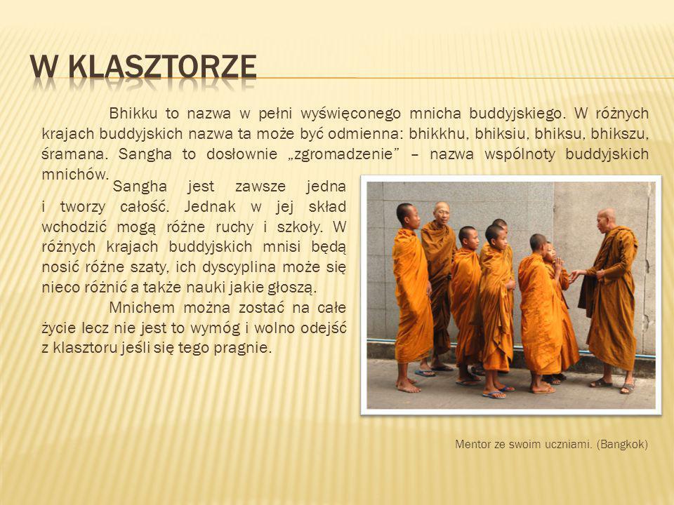 Sangha jest zawsze jedna i tworzy całość. Jednak w jej skład wchodzić mogą różne ruchy i szkoły. W różnych krajach buddyjskich mnisi będą nosić różne