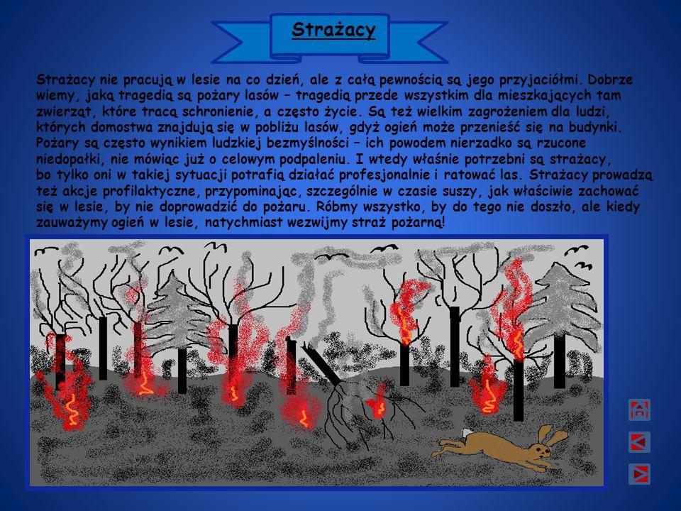 Strażacy Strażacy nie pracują w lesie na co dzień, ale z całą pewnością są jego przyjaciółmi.