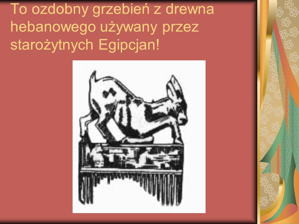 Sztabka z brązu do układania włosów w loki używana również przez starożytnych Egipcjan