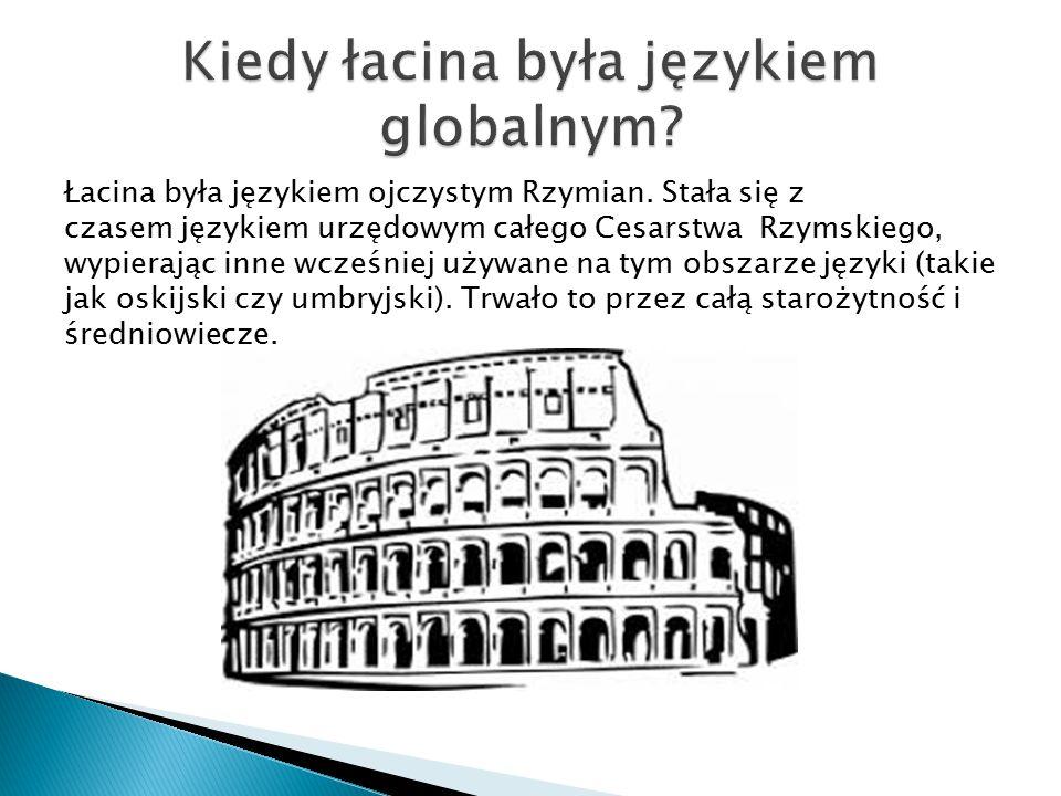 Łacina była językiem ojczystym Rzymian. Stała się z czasem językiem urzędowym całego Cesarstwa Rzymskiego, wypierając inne wcześniej używane na tym ob