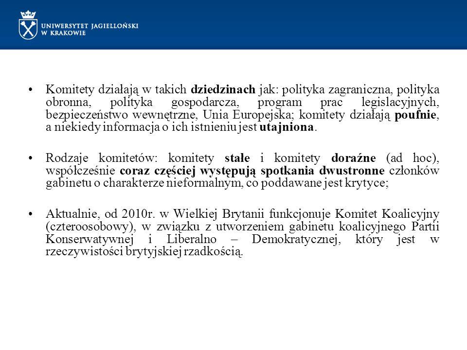 Komitety działają w takich dziedzinach jak: polityka zagraniczna, polityka obronna, polityka gospodarcza, program prac legislacyjnych, bezpieczeństwo