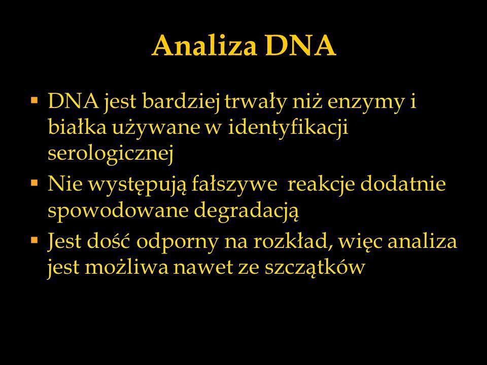 Analiza DNA  DNA jest bardziej trwały niż enzymy i białka używane w identyfikacji serologicznej  Nie występują fałszywe reakcje dodatnie spowodowane