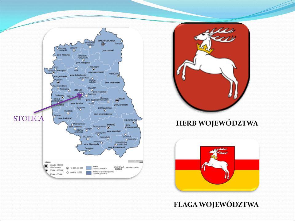 NAZWA WOJEWÓDZTWA LUBELSKIE STOLICA LUBLIN POWIERZCHNIA WOJEWÓDZTWA 25 122,49 km² MNIEJSZOŚCI NARODOWOŚCIOWE ukraińska, niemiecka, rosyjska, białoruska, żydowska, ormiańska, litewska, czeska, słowacka, GWARY / JĘZYK Gwary wschodniolubelskie: podlaska, chełmska i Pobuże (pod silnym wpływem gwar ukraińskich).