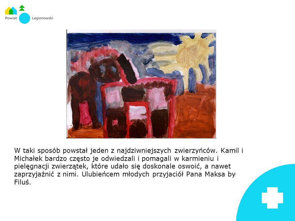 W taki sposób powstał jeden z najdziwniejszych zwierzyńców. Kamil i Michałek bardzo często je odwiedzali i pomagali w karmieniu i pielęgnacji zwierząt