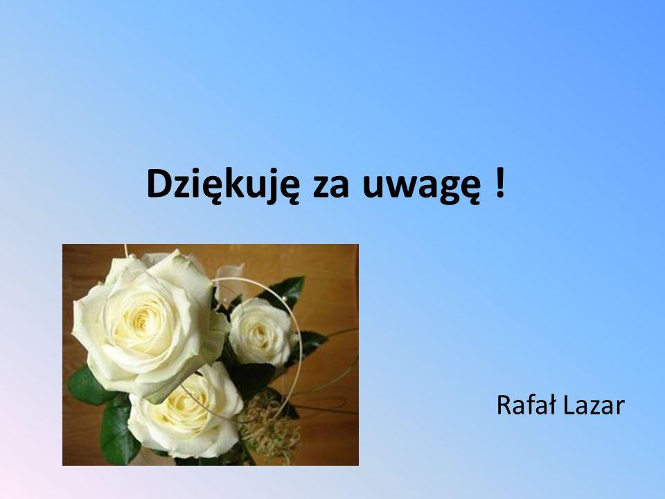 Dziękuję za uwagę ! Rafał Lazar