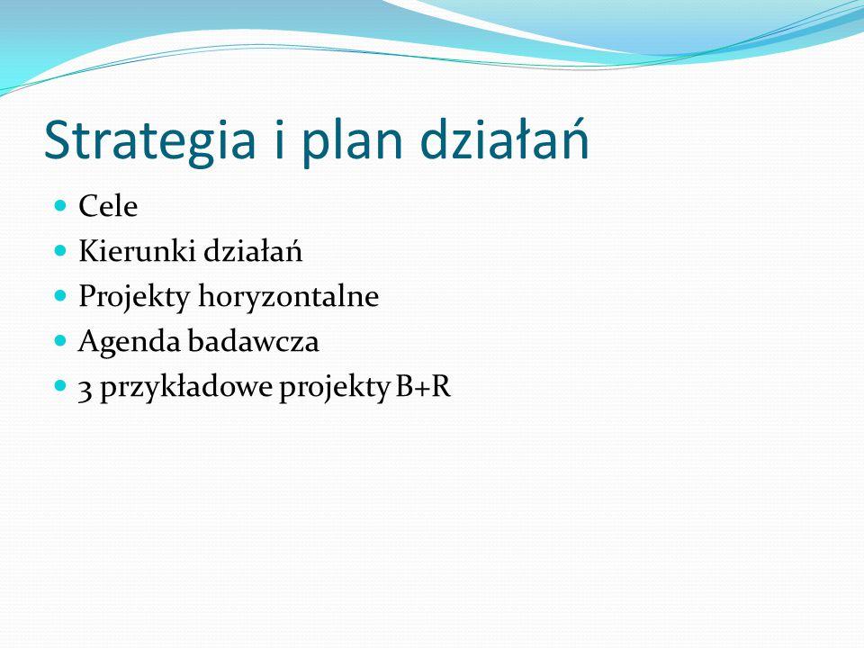 Strategia i plan działań Cele Kierunki działań Projekty horyzontalne Agenda badawcza 3 przykładowe projekty B+R