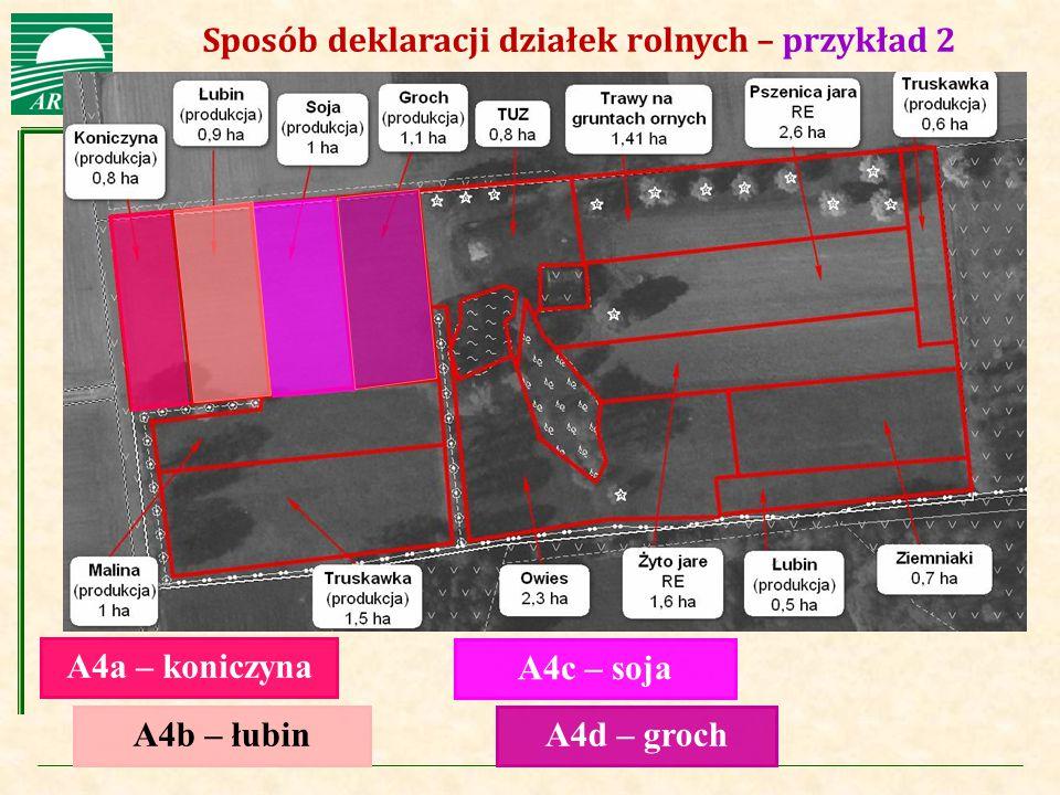 Agencja Restrukturyzacji i Modernizacji Rolnictwa Sposób deklaracji działek rolnych – przykład 2 A4a – koniczyna A4b – łubin A4c – soja A4d – groch