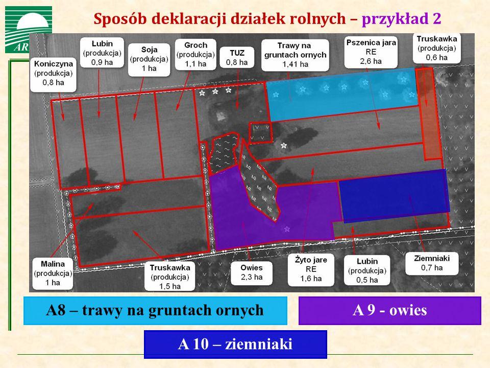 Agencja Restrukturyzacji i Modernizacji Rolnictwa Sposób deklaracji działek rolnych – przykład 2 A8 – trawy na gruntach ornychA 9 - owies A 10 – ziemn