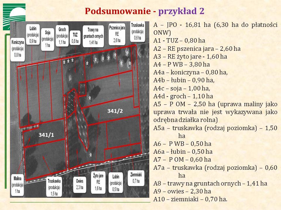 Agencja Restrukturyzacji i Modernizacji Rolnictwa Podsumowanie - przykład 2 A – JPO - 16,81 ha (6,30 ha do płatności ONW) A1 - TUZ – 0,80 ha A2 – RE p