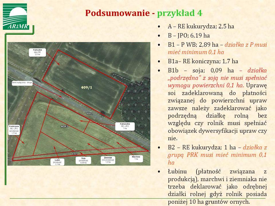 Agencja Restrukturyzacji i Modernizacji Rolnictwa Podsumowanie - przykład 4 A – RE kukurydza; 2,5 ha B – JPO; 6,19 ha B1 – P WB; 2,89 ha – działka z P