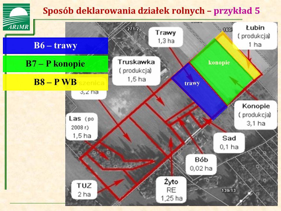 Agencja Restrukturyzacji i Modernizacji Rolnictwa Sposób deklarowania działek rolnych – przykład 5 B6 – trawy B7 – P konopie B8 – P WB trawy konopie