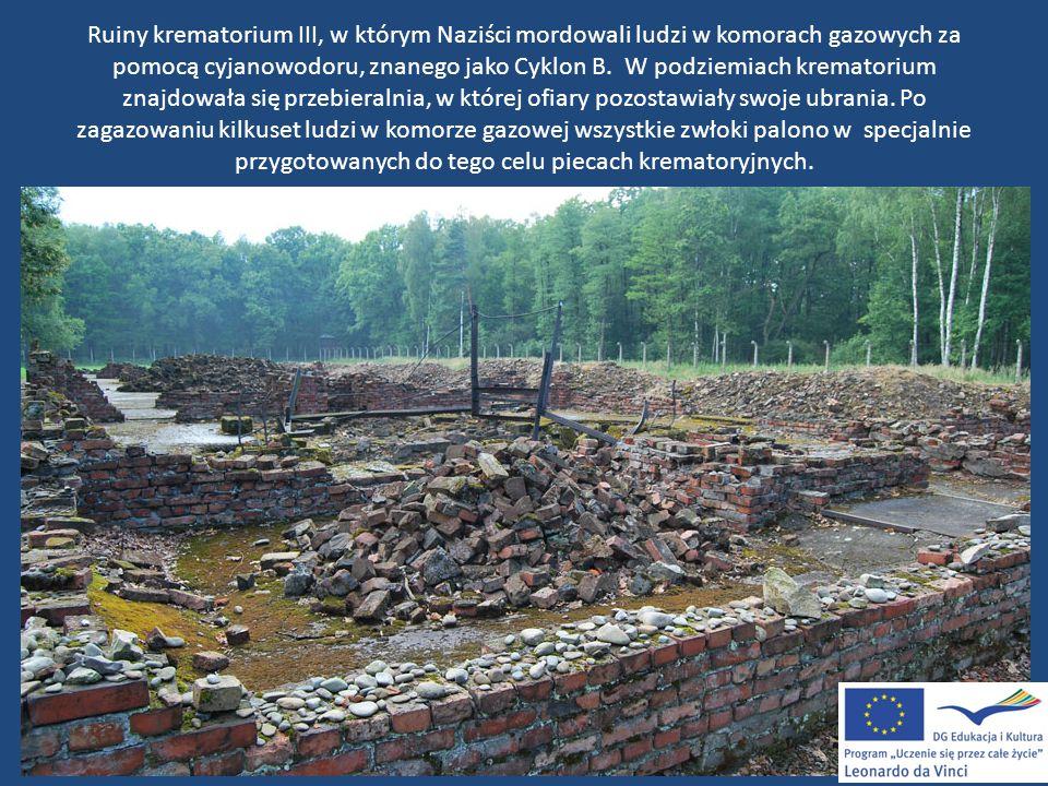 Ruiny krematorium III, w którym Naziści mordowali ludzi w komorach gazowych za pomocą cyjanowodoru, znanego jako Cyklon B. W podziemiach krematorium z