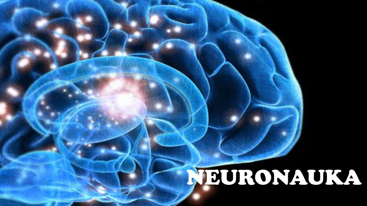 """""""(...) neuronauka, jako wszechstronna i interdyscyplinarna dziedzina badań, jest wciąż pełna niespodzianek."""