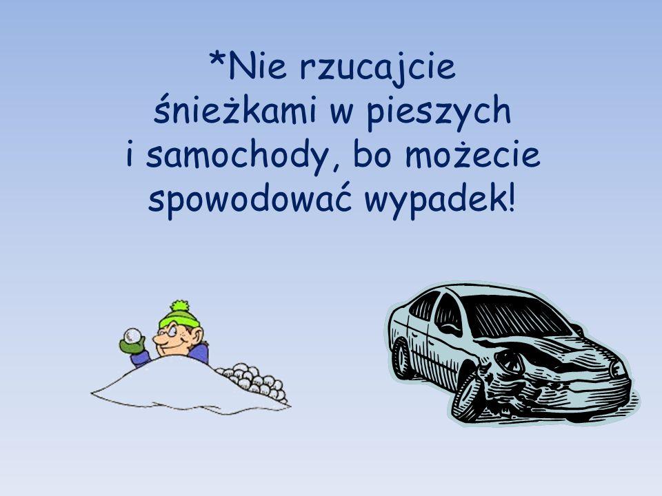 *Nie rzucajcie śnieżkami w pieszych i samochody, bo możecie spowodować wypadek!