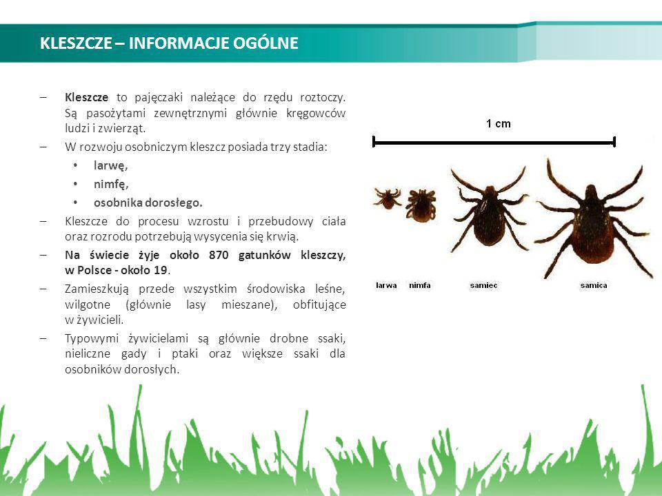 KLESZCZE – INFORMACJE OGÓLNE –Kleszcze to pajęczaki należące do rzędu roztoczy. Są pasożytami zewnętrznymi głównie kręgowców ludzi i zwierząt. –W rozw