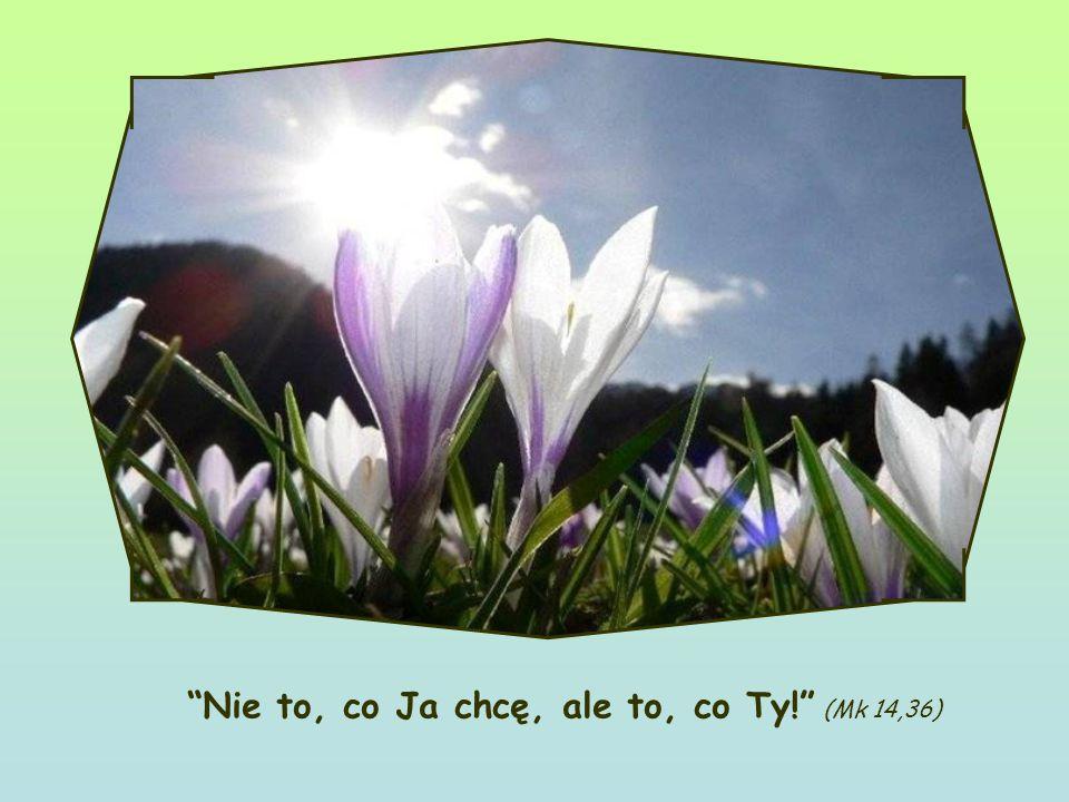 Słowo Życia Kwiecień 2011