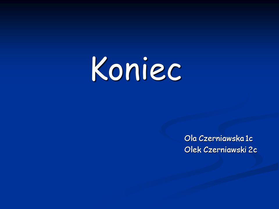 Koniec Koniec Ola Czerniawska 1c Olek Czerniawski 2c