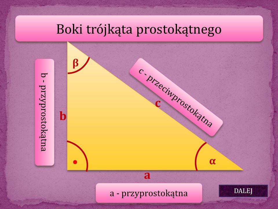 Boki trójkąta prostokątnego DALEJ b a c α β ● a - przyprostokątna b - przyprostokątna c - przeciwprostokątna