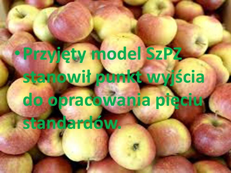 Przyjęty model SzPZ stanowił punkt wyjścia do opracowania pięciu standardów.