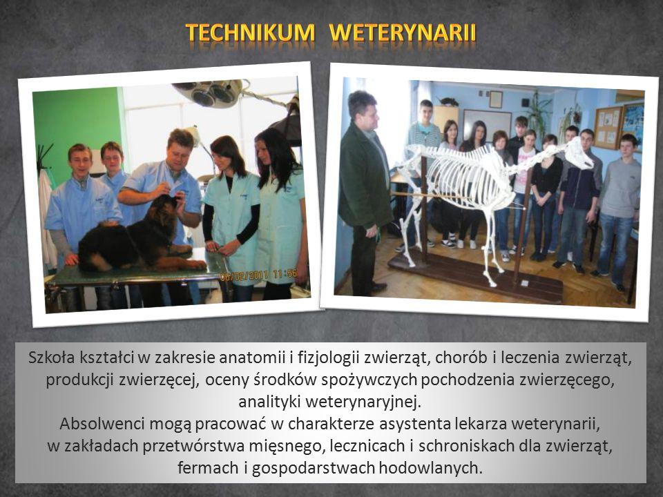 Szkoła kształci w zakresie anatomii i fizjologii zwierząt, chorób i leczenia zwierząt, produkcji zwierzęcej, oceny środków spożywczych pochodzenia zwi