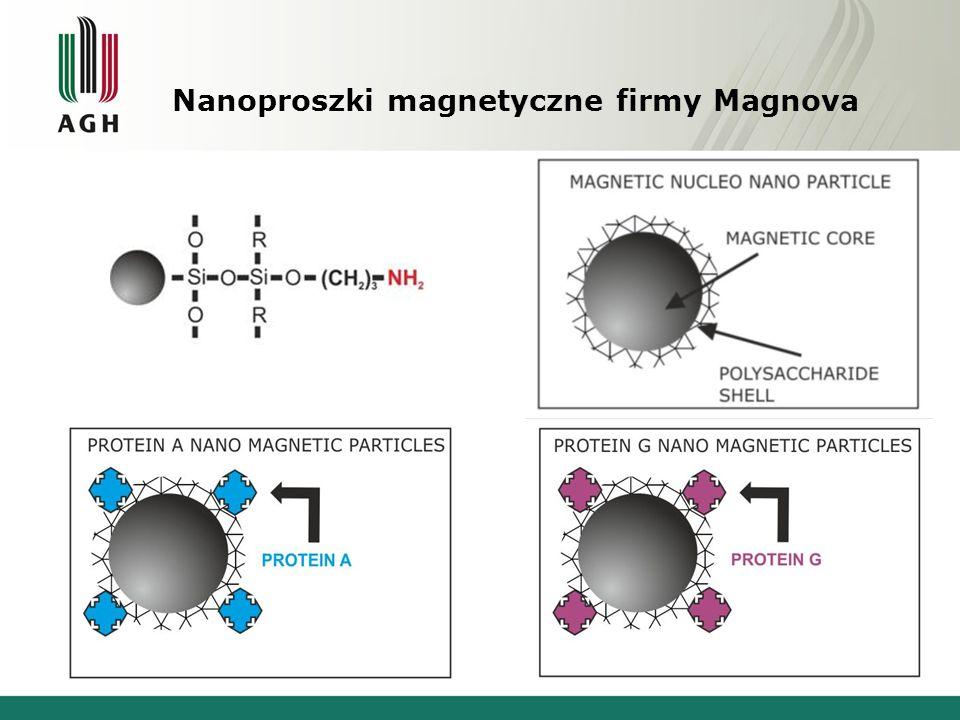 Zastosowania nanocząstek magnetycznych Kontrasty do OMR Hypertermia Transport leków Implanty