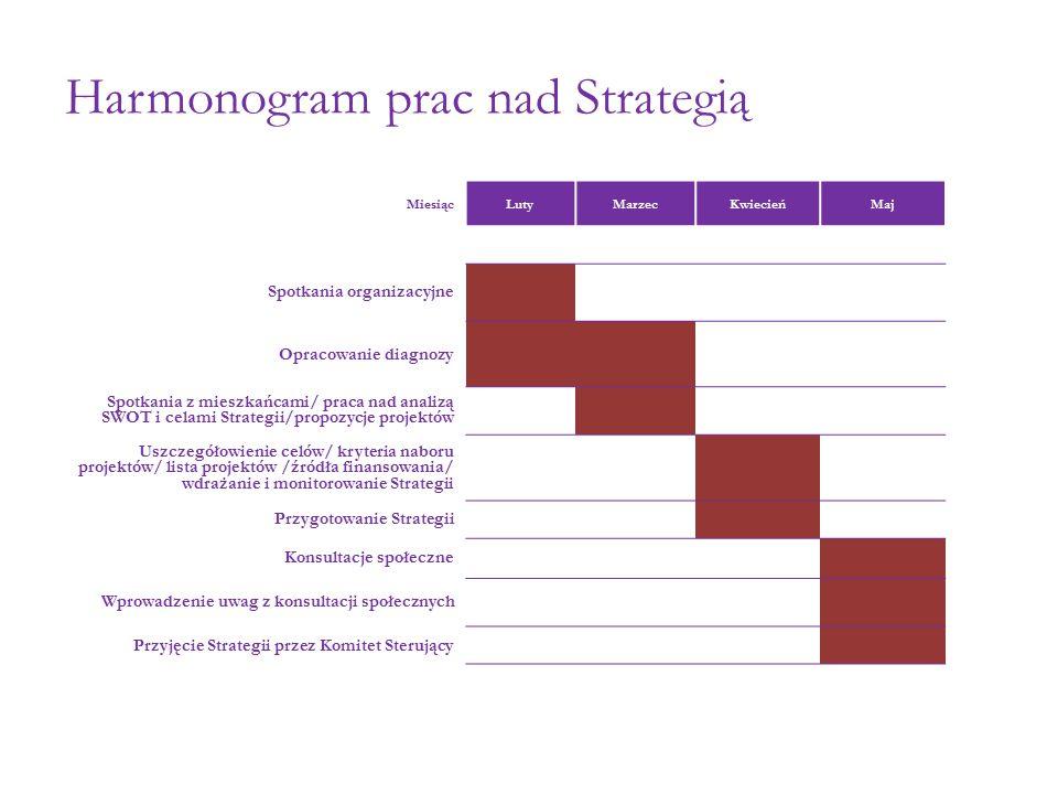 Harmonogram prac nad Strategią Miesiąc LutyMarzecKwiecieńMaj Spotkania organizacyjne Opracowanie diagnozy Spotkania z mieszkańcami/ praca nad analizą SWOT i celami Strategii/propozycje projektów Uszczegółowienie celów/ kryteria naboru projektów/ lista projektów /źródła finansowania/ wdrażanie i monitorowanie Strategii Przygotowanie Strategii Konsultacje społeczne Wprowadzenie uwag z konsultacji społecznych Przyjęcie Strategii przez Komitet Sterujący