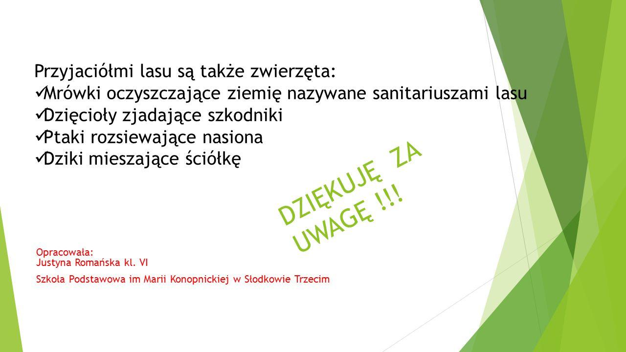 DZIĘKUJĘ ZA UWAGĘ !!! Opracowała: Justyna Romańska kl. VI Szkoła Podstawowa im Marii Konopnickiej w Słodkowie Trzecim Przyjaciółmi lasu są także zwier