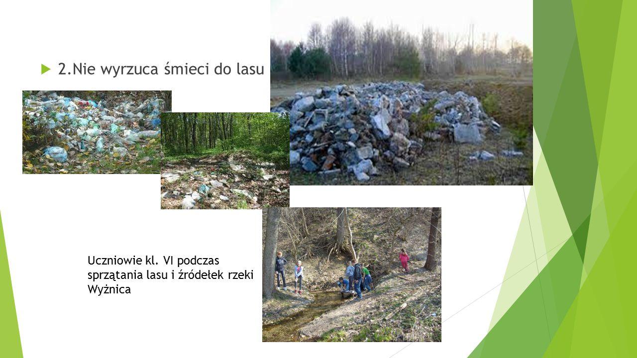  2.Nie wyrzuca śmieci do lasu Uczniowie kl. VI podczas sprzątania lasu i źródełek rzeki Wyżnica