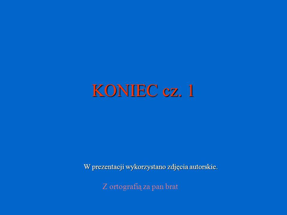 KONIEC cz. 1 Z ortografią za pan brat W prezentacji wykorzystano zdjęcia autorskie.