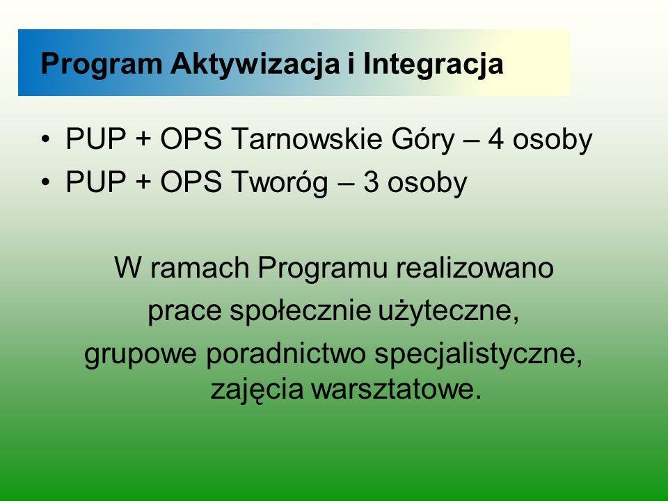Program Aktywizacja i Integracja PUP + OPS Tarnowskie Góry – 4 osoby PUP + OPS Tworóg – 3 osoby W ramach Programu realizowano prace społecznie użytecz