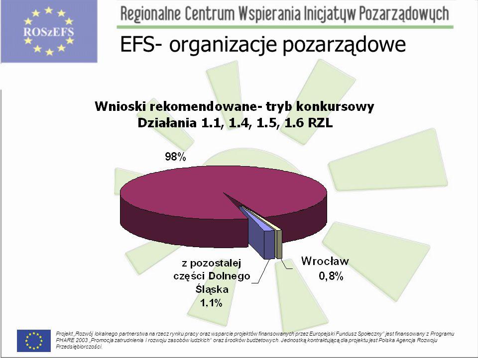 """EFS- organizacje pozarządowe Projekt """"Rozwój lokalnego partnerstwa na rzecz rynku pracy oraz wsparcie projektów finansowanych przez Europejski Fundusz Społeczny jest finansowany z Programu PHARE 2003 """"Promocja zatrudnienia i rozwoju zasobów ludzkich oraz środków budżetowych."""