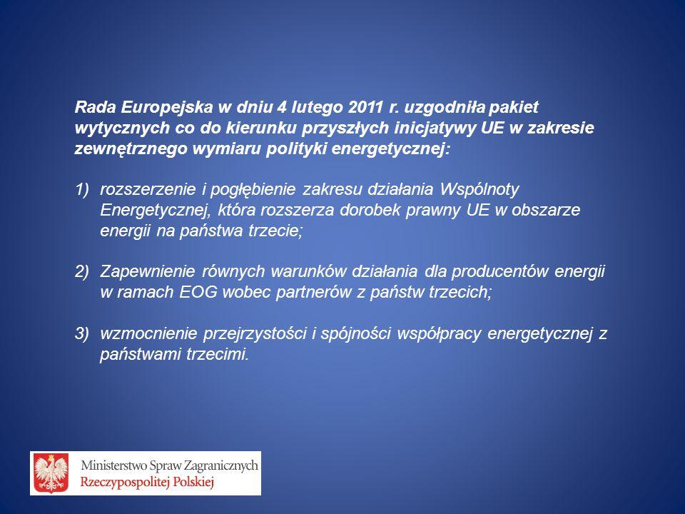 Rada Europejska w dniu 4 lutego 2011 r. uzgodniła pakiet wytycznych co do kierunku przyszłych inicjatywy UE w zakresie zewnętrznego wymiaru polityki e