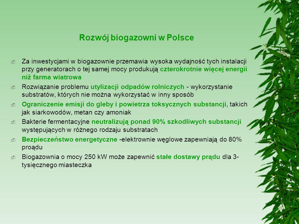 Rozwój biogazowni w Polsce  Za inwestycjami w biogazownie przemawia wysoka wydajność tych instalacji przy generatorach o tej samej mocy produkują czt