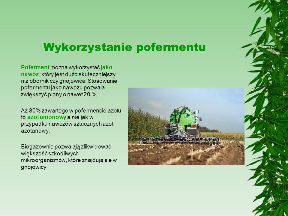 Wykorzystanie pofermentu Poferment można wykorzystać jako nawóz, który jest dużo skuteczniejszy niż obornik czy gnojowica. Stosowanie pofermentu jako