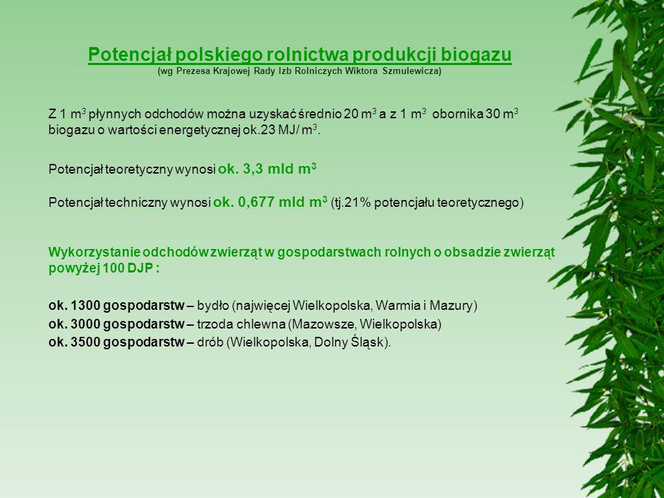 Potencjał polskiego rolnictwa produkcji biogazu (wg Prezesa Krajowej Rady Izb Rolniczych Wiktora Szmulewicza) Z 1 m 3 płynnych odchodów można uzyskać